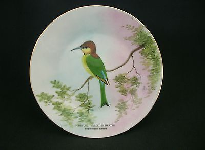 Rattota China Decorative Hand Painted Bird Bee Eater Cabinet Wall Plate 20cms