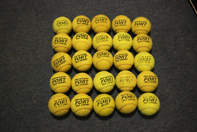 25 Used Tennis Balls - Ideal Dog Toys