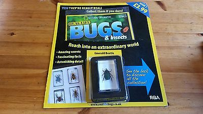 National Geographic Real-Life Bugs & Insects Magazine Issue 2 Emerald Beetle