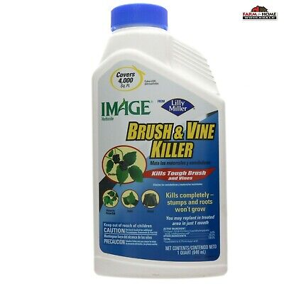 Brush Vine Killer ~ 1 Qt Concentrate ~ New ~ Free Shipping