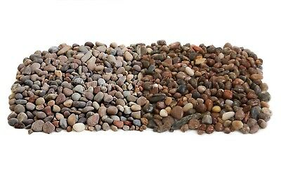 Scottish Beach Pebbles 8-14mm *Ideal for gardens, water features or indoors*
