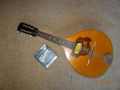 Mandolin With New Set Of Strings.