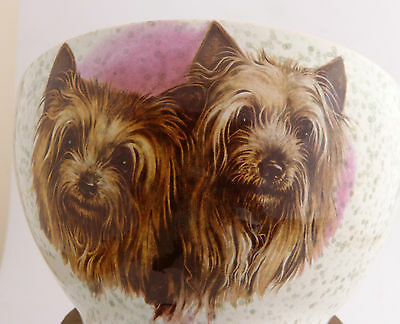 Yorkshire Terrier Yorkie  decorated Ceramic Bowl/Dish