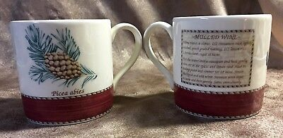 2 Wedgwood Sarah's Garden Queen's Ware Christmas Mugs Mulled Wine Pine Cone