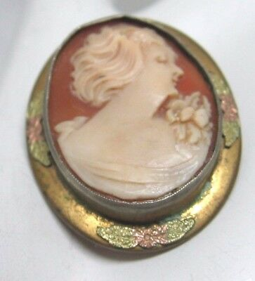 Antique Victorian Lady Carved Profile Cameo Brooch~Pin Saves Pets