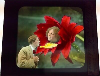 Antique Magic Lantern Colored Glass Slide Surreal Romantic Unique Flower