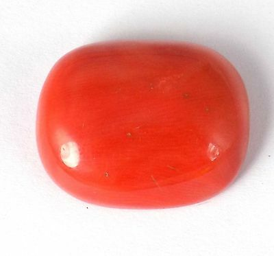 1 Pcs Natural Italian Red Coral Uneven 18x22mm 30.82Cts Cabochon Cut Gemstone