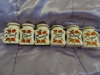 Vintage 1950s Toni Raymond Pottery Spice Jars. Full Set. Great Condition.