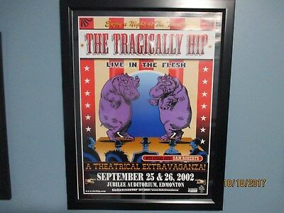 The Tragically Hip Live In The Flesh 18x24 Concert poster 2002