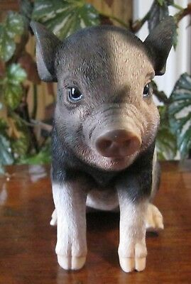 New Pet Pals Sitting Baby Pig Figurine