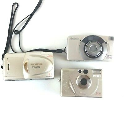 Lot of Various Canon and Olympus Point and Shoot Digital Cameras