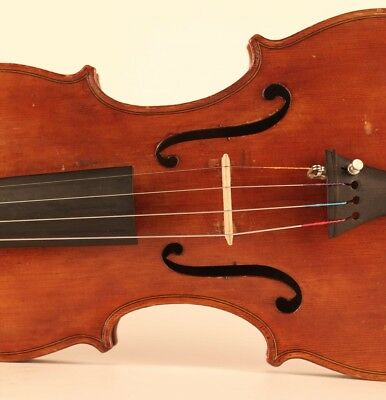 alte feine geige labeled Celani 1901 violon old violin cello viola 小提琴 ヴァイオリン