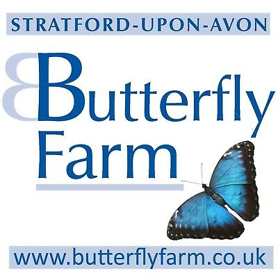 Family tickets to Stratford-upon-Avon Butterfly Farm - Valid until 22/9/18