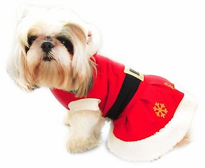Christmas Dog Costume. Fancy Dress. MISS SANTA with Stars. NOW PRICE REDUCED