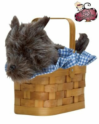 Dorothy's Dog Toto in a Basket