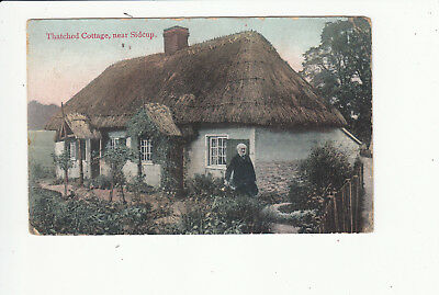 Thatched Cottage near Sidcup Vintage Postcard