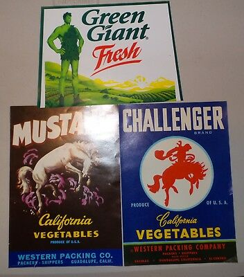 Lot of 3 Vintage Vegetable Crate Labels Western Packing & GreenGiant Advertising