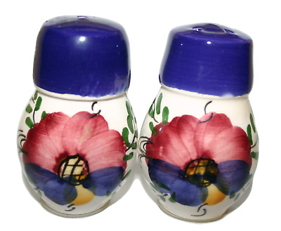 Floral Handpainted Pottery Design Salt and Pepper Cruet Set Collectors Item