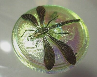 Vintage Xl Czech Glass Button Molded Dragonfly On Irresdescent Pink-Green-Yellow
