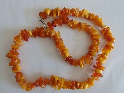 Vintage Egg Yolk Honey Multicolored Natural Baltic Amber stones Necklace