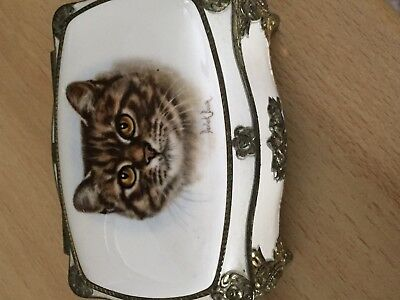 Small China Music Box With Picture Of Cat