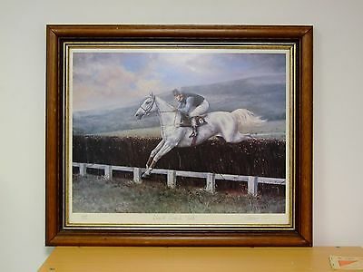 Desert orchid Gold Horse Racing print By Maxine Cox