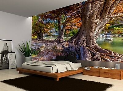 BIG WISE BEAUTIFUL TREES WATER FALL Wall Mural Photo Wallpaper GIANT WALL DECOR