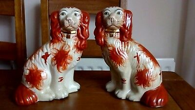 lovely large pair of antique staffordshire dogs with rose gold  collars