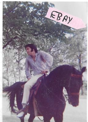 1970's Elvis Candid Photo On Horse Graceland Lot # 206 Estate Find!