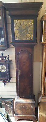 Antique 18th Century Brass Faced 8 Day Grandfather Clock Tho Andrews - Sheffield