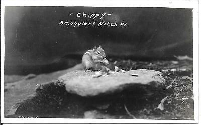 - Chippy  - Smugglers Notch, Vermont Photo Post Card