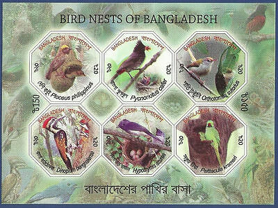 Bangladesh 2012 Mnh Birds Nests Odd Shape Stamps Imperf Miniature Sheet Ms Bird