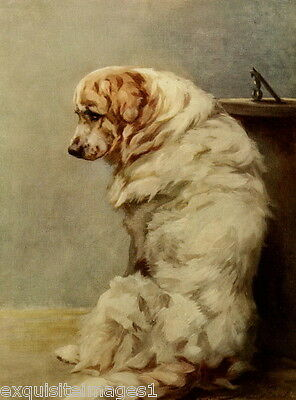 1914 Maud Earl~Great Pyrenees Mountain Dog Dogs~ NEW Large Note Cards
