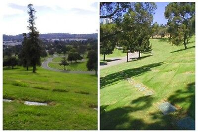 2 cemetery plots- Forest Lawn Memorial, Covina Hills, CA.  Golden Dawn section