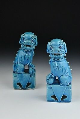 Pair of 19th Century Chinese Foo Dog Statues in Blue Glaze