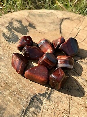 Polished Red Tigers Eye (10 Stones)