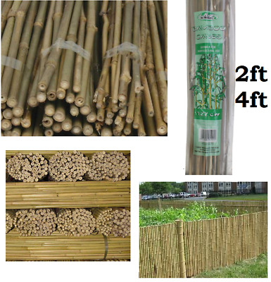 Strong Natural Bamboo Garden Canes Bamboo Plant Support Heavy Duty Cane 2ft/4ft
