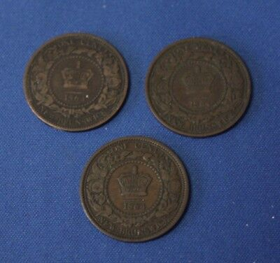 New Brunswick 1864 large cent lot of 3 large cent VG to VG+