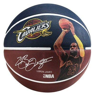 NEW Spalding Lebron James Basketball   from Rebel Sport