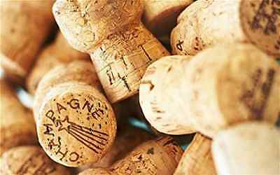 50 ((Champagne Corks)) High Quality, Great Variety, Great for Crafting!
