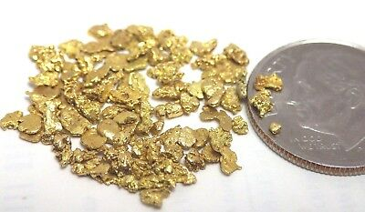GOLD NUGGETS 3.02 grams Alaskan Placer Hunter Creek #14 Mesh