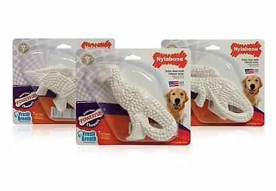 Nylabone Dental Dinosaur Dog Chew for Pet Oral Hygiene Fresh Breath Teeth Toy