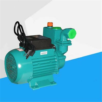 Home Self-Priming Water Pump 1ZDB45-B(550W)