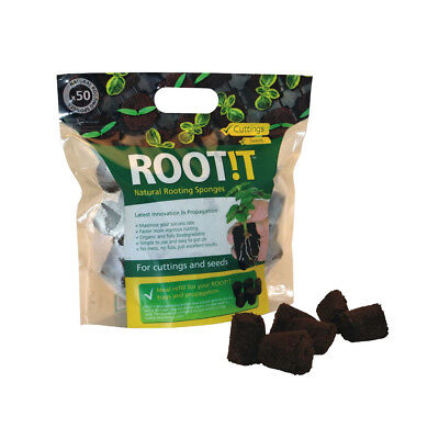 ROOT!T Natural Rooting Sponge Refill Bag (50 pack)