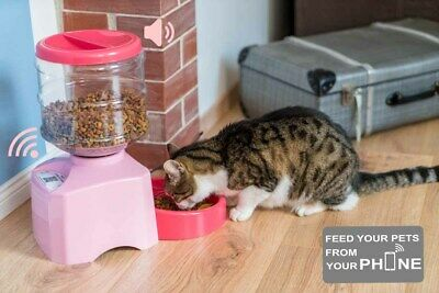 Automatic Pet Feeder Puppy, Dog, Kitten, Cat Smart Wi-Fi Smartphone Programmable