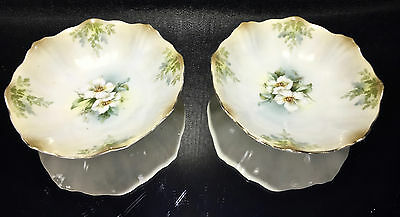 RS PRUSSIA Pair of Small Berry Bowls With White Rose and Fern Decoration 2 PCS