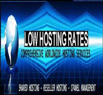 Alpha Reseller Hosting USA Servers cpanel/WHM Zamfoo SSD Servers