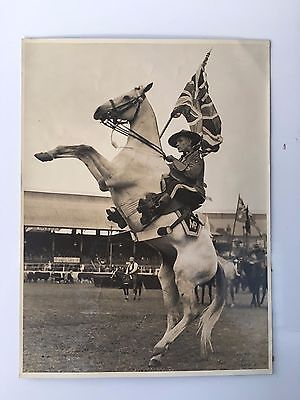 1939 Royal Easter Show Sydney Photo White Grey Horse Rearing with Flag