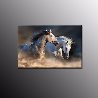 Animal Canvas Wall Art Home Decor Running Horses Canvas Prints Painting Picture