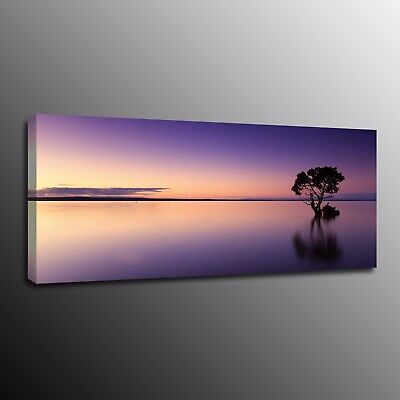 Landscape Home Decor Canvas Prints Painting Picture Wall Art Night scenery